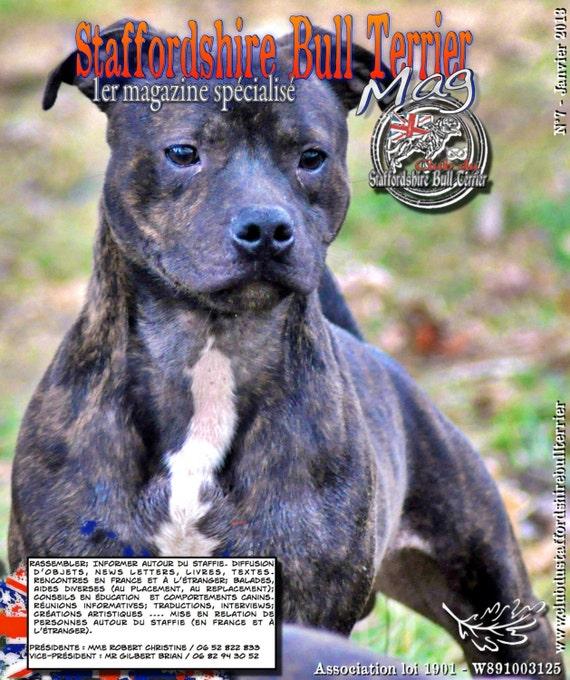 Comportement Staffie items similar to magazine spécialisé staffordshire bull terrier