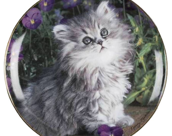 Cat Collector Plate | Persian Kitten Plate | Cat Wall Plate | Cat Lover Gift