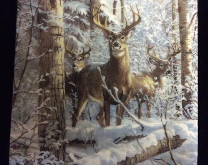 Deer Wildlife Rectangular Dresser Tray Plate Winter Scene