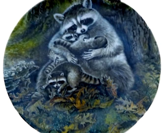 Vintage Raccoon Collectible Plate | Wall Hanging Plate