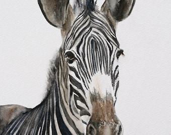 ATC zebra watercolor painting Zebra painting. Zebra print of Zebra art print. african artwork. SMALL Artist Trading Card of zebra