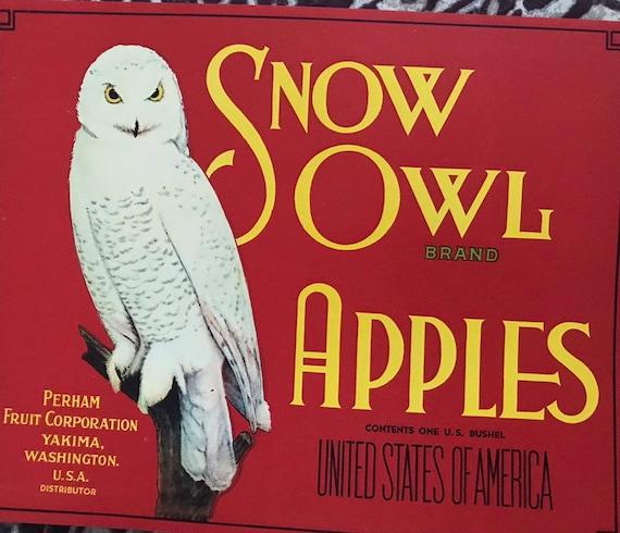 ***AN ORIGINAL FRUIT LABEL*** SNOW OWL Vintage Yakima WA Apple Crate Label red