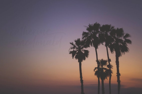 Palm Tree Print, Sunset Art, Photography Print, Bedroom ...