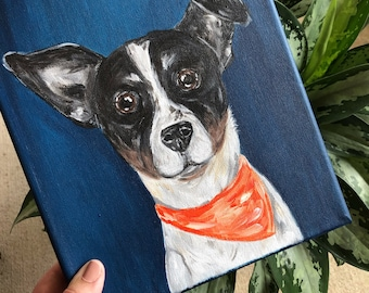 Custom Animal Portraits Hand-Painted Shoes  Dogs Cats Birds Exotics