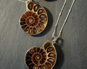 Ammonite Fossil / Ammonite Necklace / Silver Ammonite Necklace / Ammonite Pendant  / Prehistoric Relic