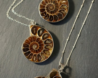 Ammonite necklace goldtone chain Shell necklace Save 15/% Fossil necklace