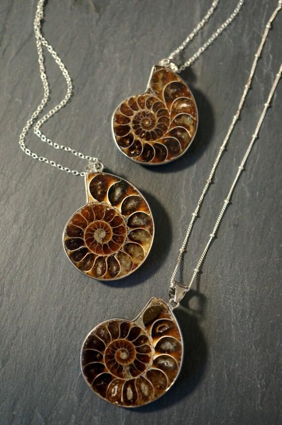 Ammonite fossil ammonite necklace silver ammonite necklace etsy image 0 aloadofball Images