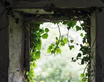 Irish Window Photography - Abandoned Cottage Fine Art Photograph - County Fermanagh - Northern Ireland