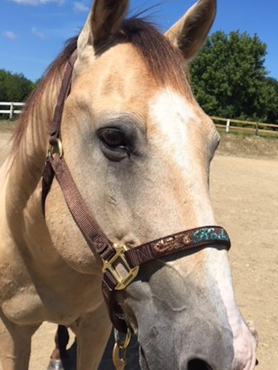 Hand-Beaded Horse Halter The American Flag Halter