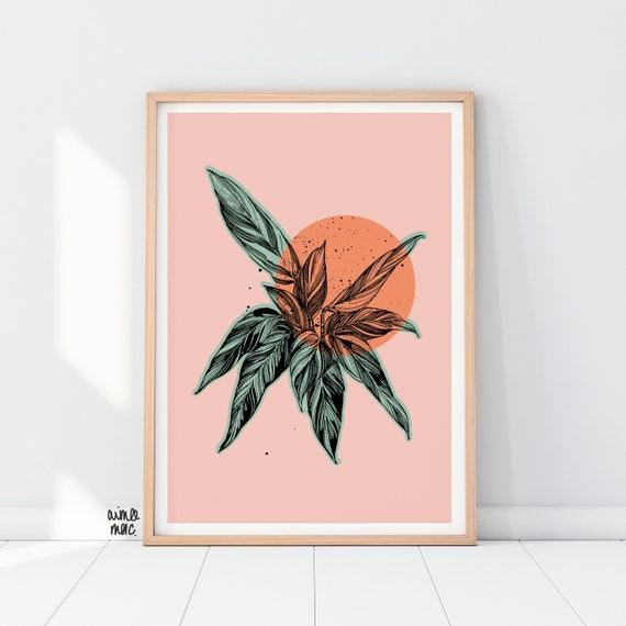 Colour Block Calathea Print - A4/A3 - Pink Green Orange Wall Art - Botanical Print - Calathea Triostar - House Plants