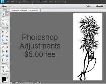 Photoshop Image Adjustments