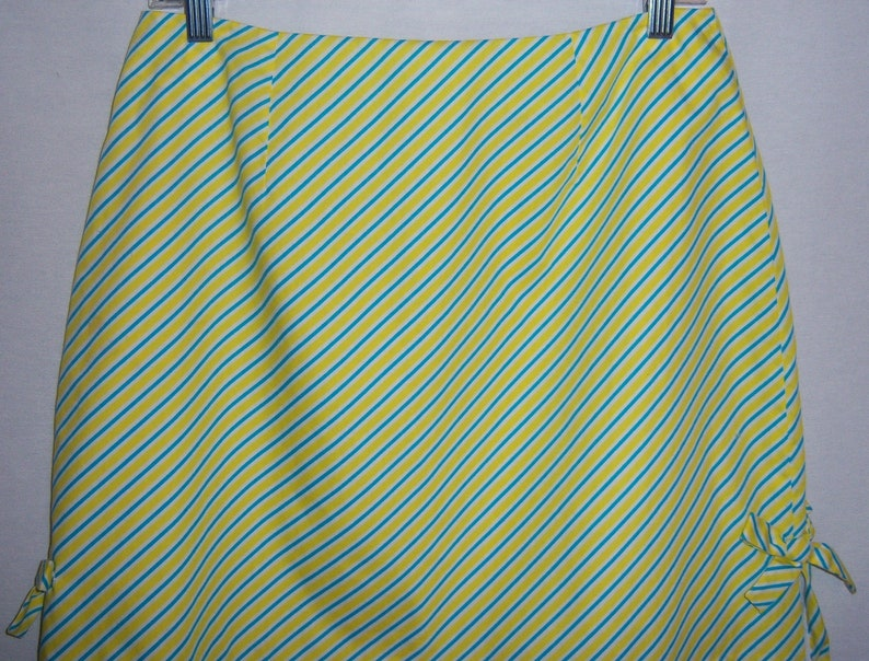 Women's Medium Lilly Pulitzer Skirt Blue White Stripes A Line Short Lined Cotton Women's Clothing Clothing, Shoes & Accessories