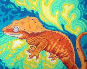 Gecko Artwork, Color Pencil Original Art