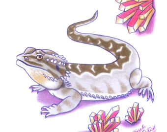 Bearded Dragon Drawing - Pink Crystals