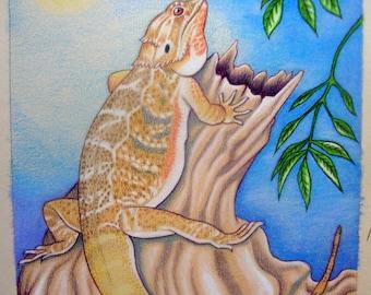 """11"""" x 14"""" Custom Reptile Pet Potrait"""