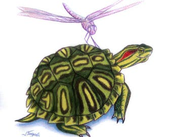 Turtle Drawing - RES with Dragonfly
