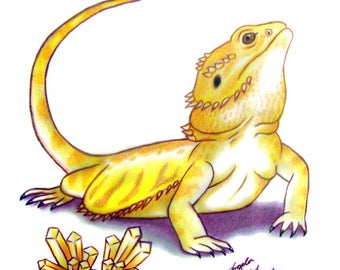 Bearded Dragon Drawing: Super Citrus With Crystals