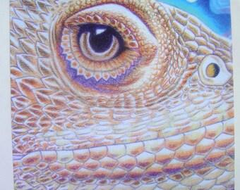 Bearded Dragon Art Poster #1