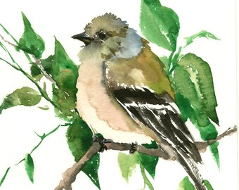 Female American Goldfinch Artwork bird art original watercolor one of a kind painting, green wall art, watercolor art, goldfinch birds bird
