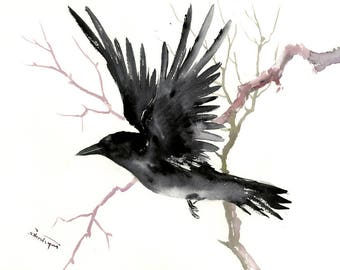 Flying Raven, Original watercolor painting, 12 x 16 in crow lover art raven lover black and white, raven, American Raven