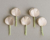 50 Round Paper Leaves - Light Brown - Eucalyptus Leaves with Wire Stems - Made of Mulberry Paper