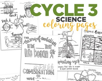 Cycle 3 SCIENCE coloring pages (4th edition)