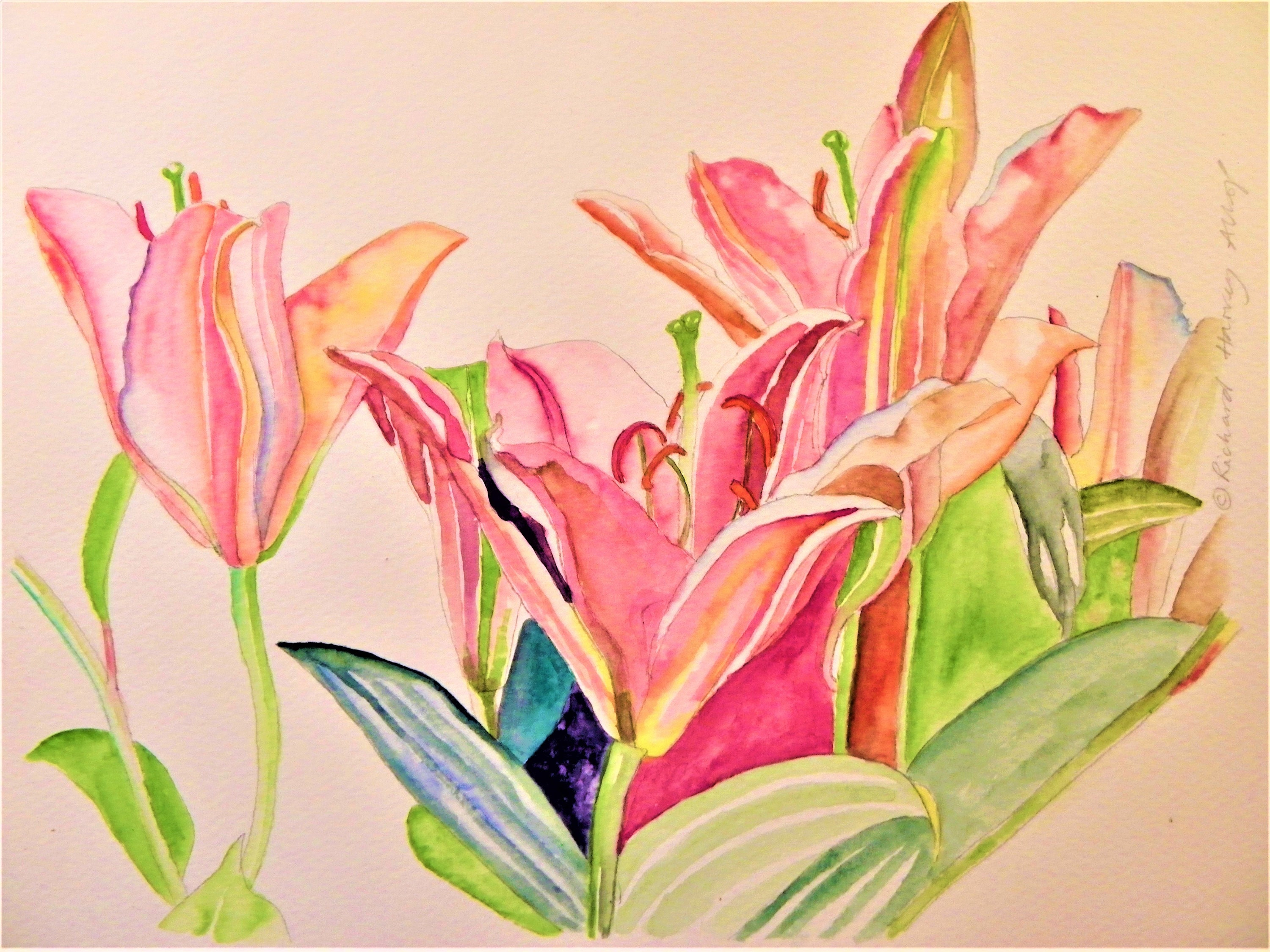 Lillies Painting Flower Art Lily Art Paintings Of Flowers Etsy