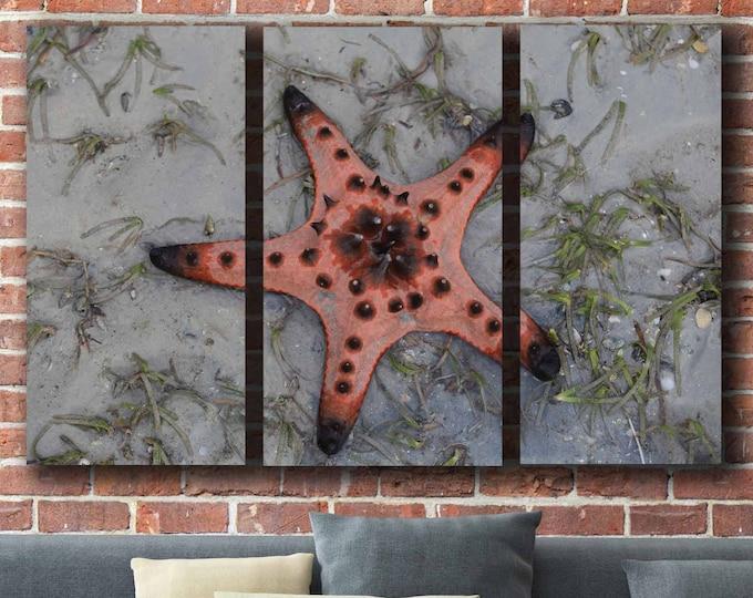 Starfish Wall Art,Decorative Wall Art,Large Art,Starfish Canvas Art,Canvas Print,Starfish Canvas Print,Living Room Art,Living Room Art Print