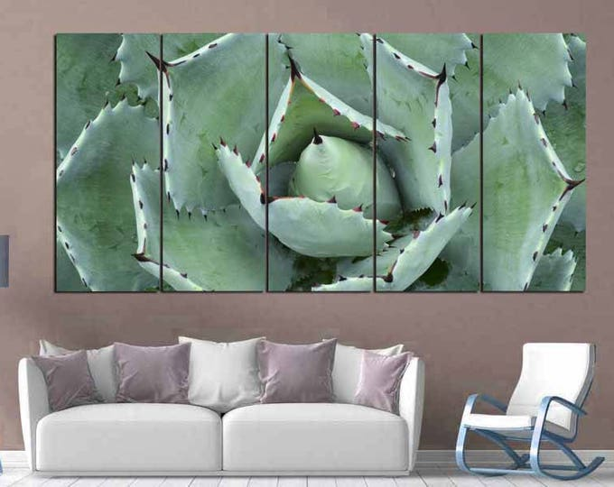 Agave Cactus Wall Art,Large Cactus, Agave Canvas Print,Blue Agave Art,Large Agave Wall Art,Agave Canvas Art,Large Cactus Wall Art,Cactus Art