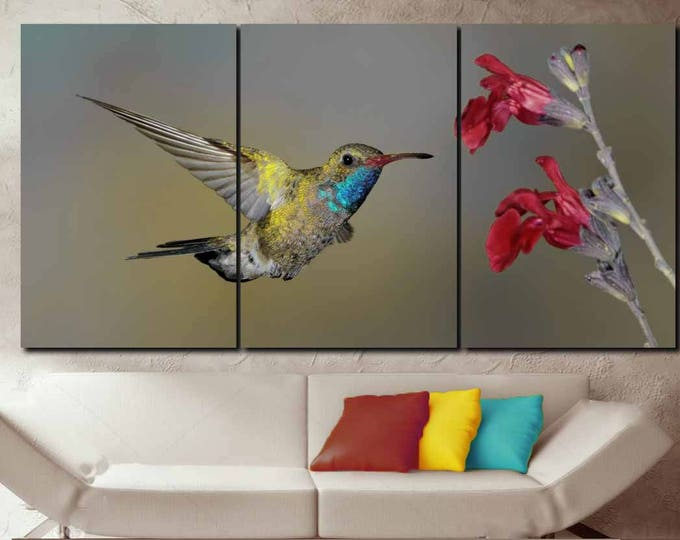 Hummingbird Art,Hummingbird Wall Art,Male Broad-Billed Hummingbird Art Print,Hummingbird Canvas Art,Hummingbird Wall Decor,Hummingbird Print