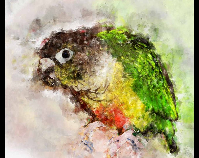Parrot Watercolor Art,Parrot Art Print,Parrot Art Canvas Print,Bird Art Print,Bird Watercolor Art,Colorful Parrot Art,Parrot Wall Art,Parrot