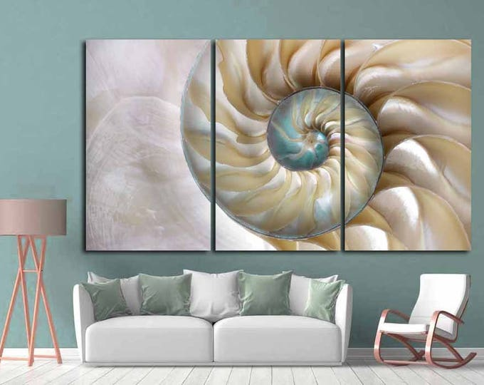 Seashell Wall Art,Seashell Canvas Print,Large Decorative Art, Nautilus Shell Wall Art,Fibonacci Pattern Nautilus Shell, Large Office Art,