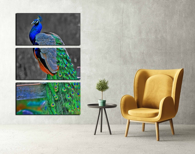 peacock wall art canvas print, peacock art print, peacock wall decor, peacock large art print
