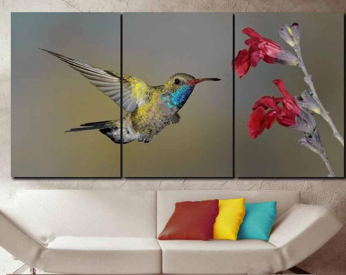 Hummingbird Art,Hummingbird Wall Art,Male Broad-Billed Hummingbird Art Print,Hummingbird Canvas Art,Hummingbird Wall Decor,Hummingbird Print