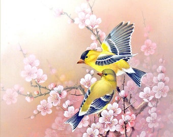 Yellow Birds ,  Pink Flowers - Art Print of Watercolor Painting