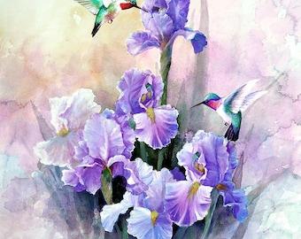 Hummingbirds and Purple Iris,  Archival Print of Watercolor Painting