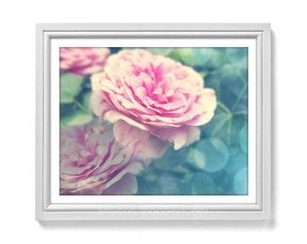 Flower photo Printable art Rose photography Printable photography soft pink rose photo Dreamy photography pink 11x14 print Flower print