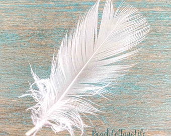 ANGEL FEATHER Wall Art Photographic Print or Canvas White Turquoise Seafoam Teal Home Decor Beach House Cottage Coastal Home