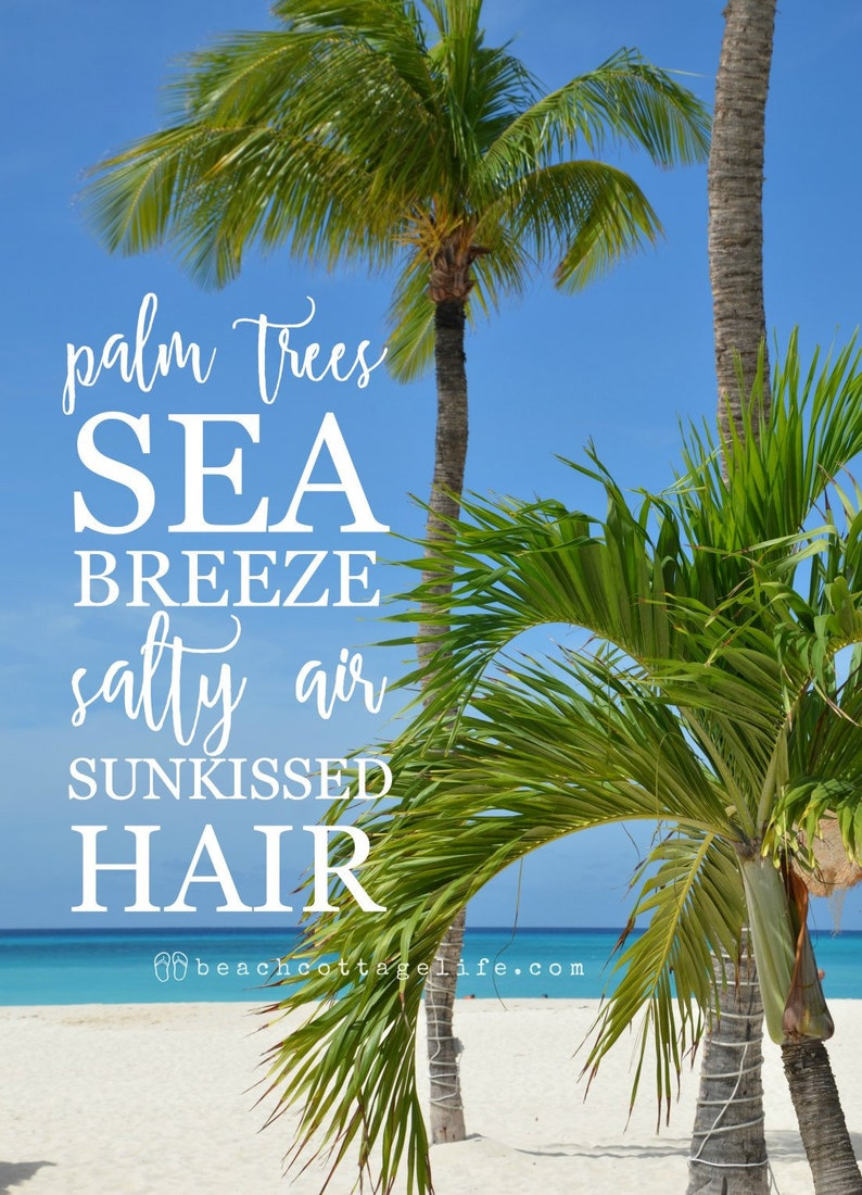 BEACH Photography Palm Trees Sea Breeze Salty Air Carribean image 0