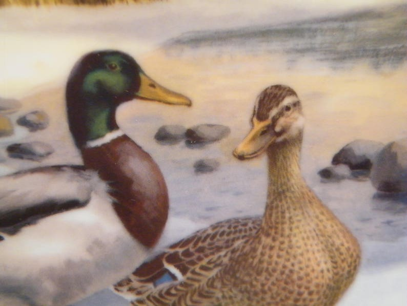 fathers day man cave Vintage 1986 2nd issue in Living With Nature Series The Mallard Duck Collector Plate by Bart Jerner wildlife Ducks