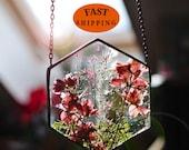 Pressed Flower Frame, Herbarium, Pressed Flower Art, Pressed Flowers, Dried Flowers, Botanical Art, Pressed Plant Frame, Framed Dried