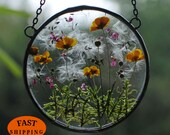 MARIAELA, glass floating frame, pressed flower art, buttercup, yellow flowers, forget-me-nots, glass art frame, Glass Hanging Frame