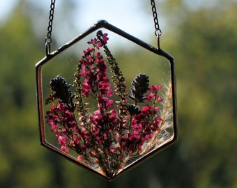 hanging plants, air plant terrarium, Pressed Flowers, terrarium, air plant terrarium, terrarium decor, Stained glass decor