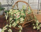 Vintage Rattan Basket Retro 1970s Bohemian Style Magazine Rack Planter Woven Wicker Handle Open Ended Boho Entryway Home Decor