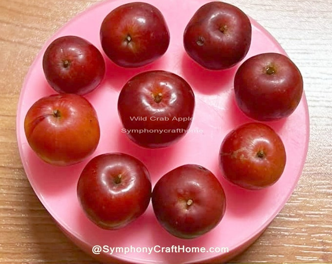 3D mini apple mold, realistic wild apple mold, wild crab apple mold, apple silicone mold, soap apple mold, candle apple mold, make in U.S.A