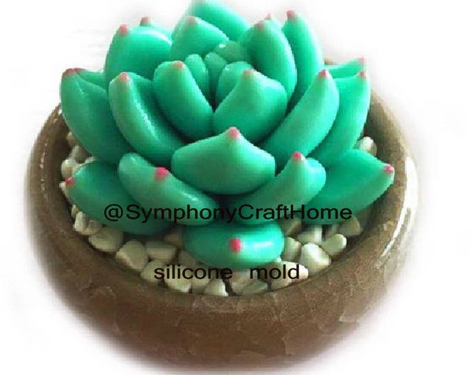 3D mold, succulent plant mold, cactus silicone mold, plant mold, cactus pot mold, succulent mold, resin mold, soap mold, clay silicone mold