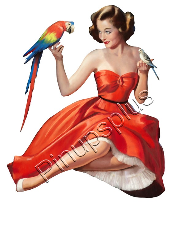 Sexy Retro Pinup Girl With Parrot And Parakeet Waterslide Decal For Guitars, Lockers, Toolboxes, Furniture Jewelry Boxes S796 by Etsy