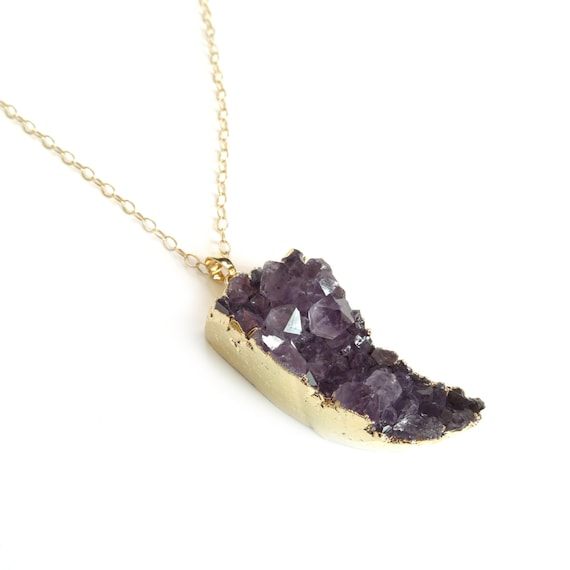 Long Gold Amethyst Horn Necklace
