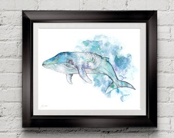 Blue whale water colour fine art print