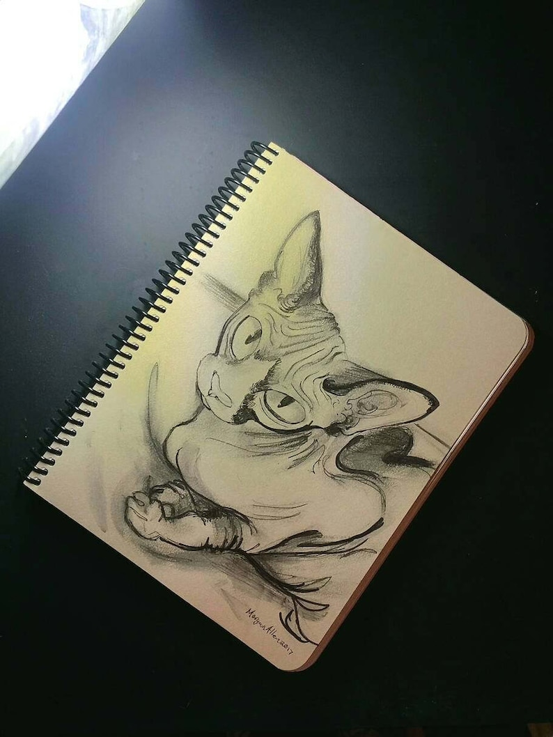 Sphynx Cat ink drawing on metallic paper image 0